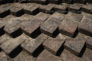 Diagonal arrangement of Terracotta Bricks, Ballal Dhipi