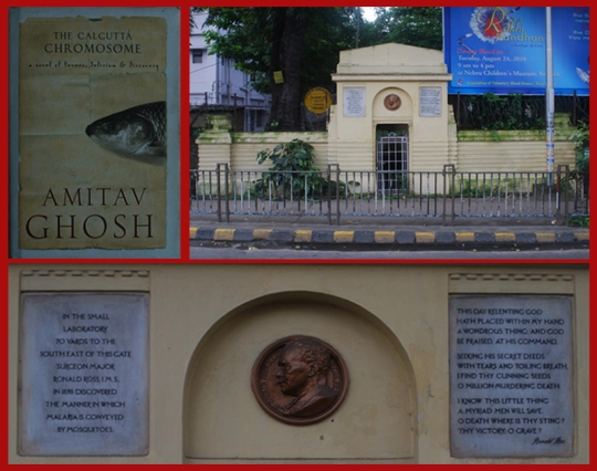 Top Left: Cover of Calcutta Chromosome; Top Right: Ronald Ross Memorial, Calcutta; Bottom: Ross' Medalion and the two inscriptions
