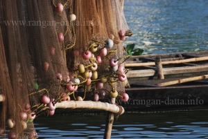 Fishing Net, East Calcutta Wetland (File Photo)