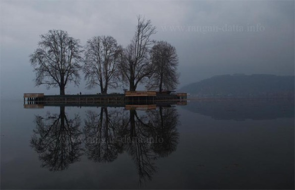 Char Chinar (Rupa Lank), Dal Lake, Srinagar, Jammu and Kashmir (J&K)