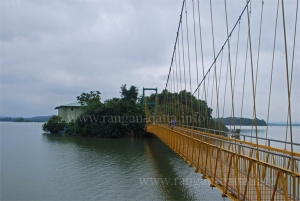 Laknavaram Suspension Bridge