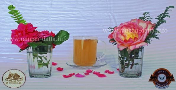 Rose Tea (Gulab Bahar), Chai Country, Cochrane Place, Kurseong