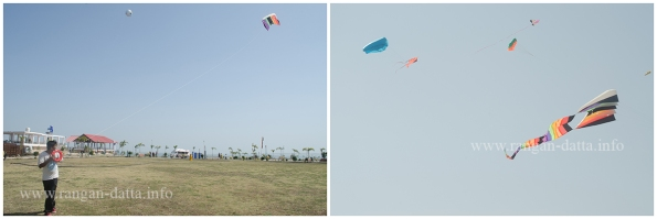 Kite flying, Jal Mahotsav, Hanuwantia