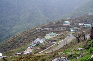 Zuluk, Silk Route, East Sikkim