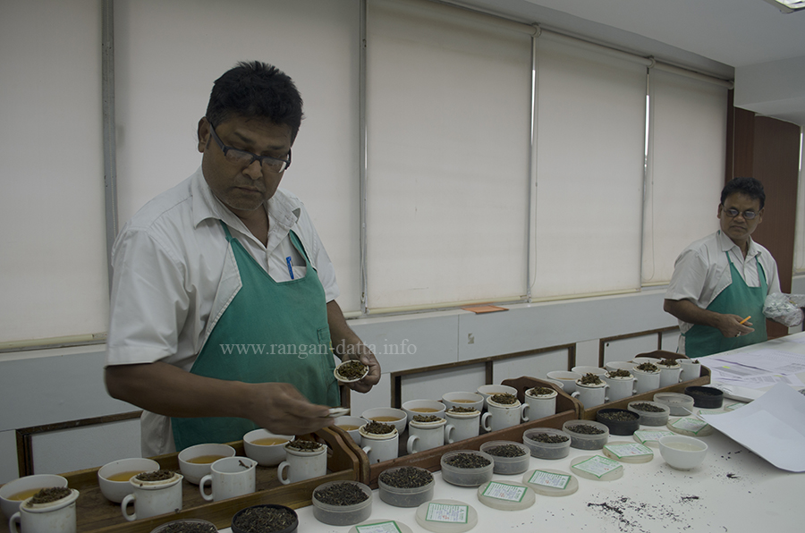 Sorting the tea samples for the tea taster, Goodricke, Gurusaday Road, Kolkata