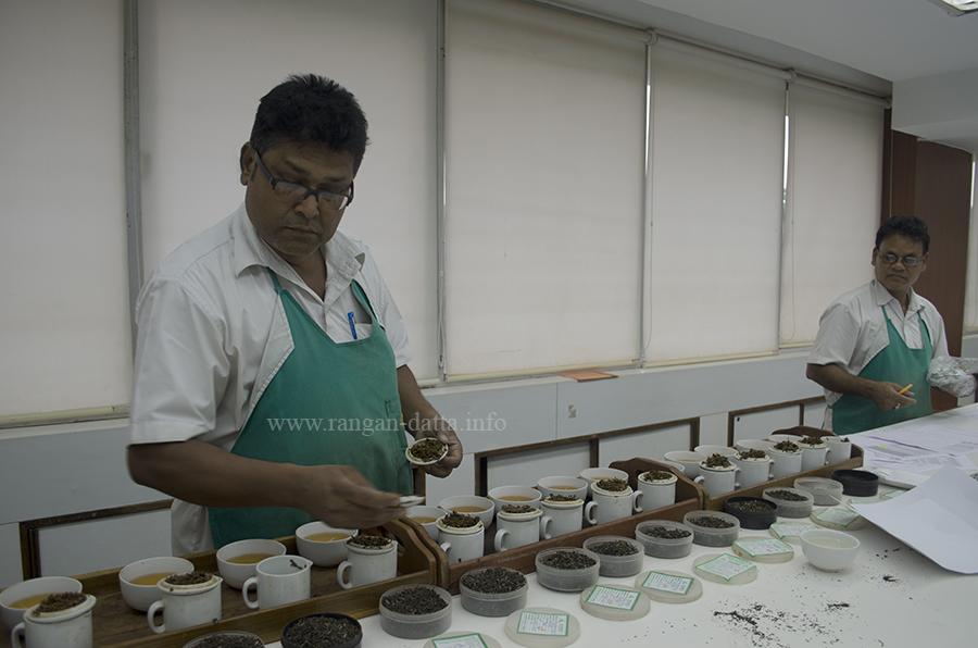 Sorting the tea samples for the tea taster, Goodricke, Gurusaday Road, Kolkata