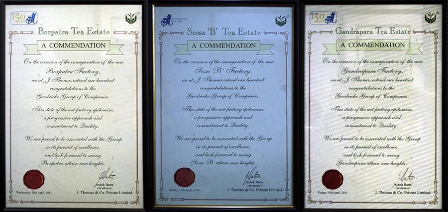 Framed Commendation Certificates, Goodricke Office, Kolkata