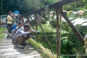 Photographers take aim from a bridge on Kuekhola, East Sikkim