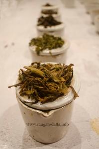 Tea Infusions, Margaret's Deck