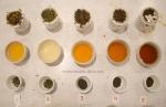 tea-tasting-3