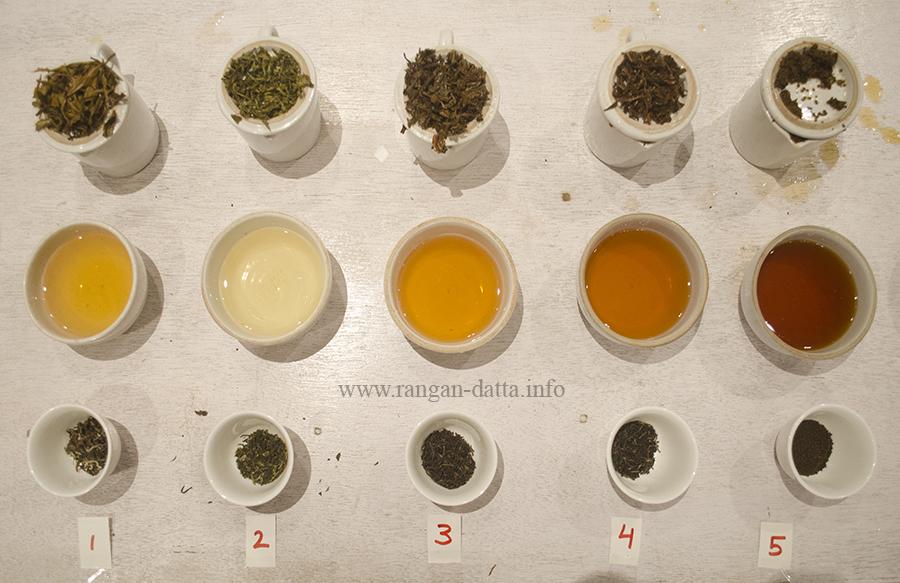 The Tea Tasting platter, Margaret's Deck, Goodricke Teapot, Kurseong