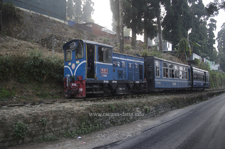 Darjeeling Himalayan Railway Toy Train, at Church Gate, old Kurseong Station