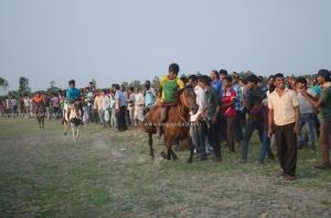 Heading for the finish line, Horse Race, Jatar Deul