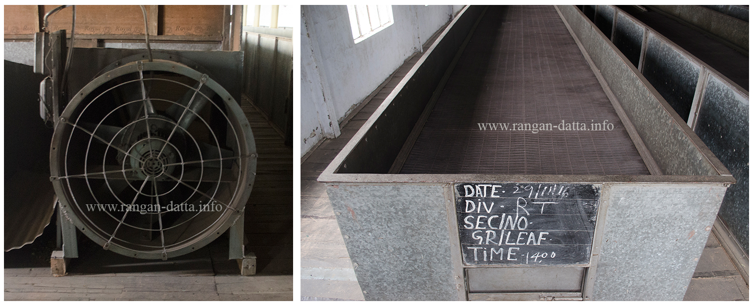 L: Fan for blowing air and R: Withering Tray, Margaret's Hope Tea Factory, Kurseong