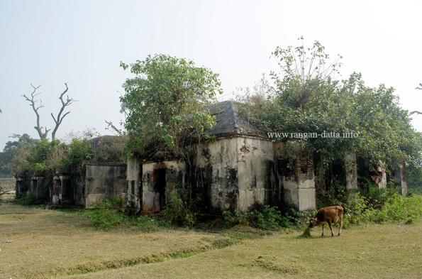 Bawali Farmhouse 30