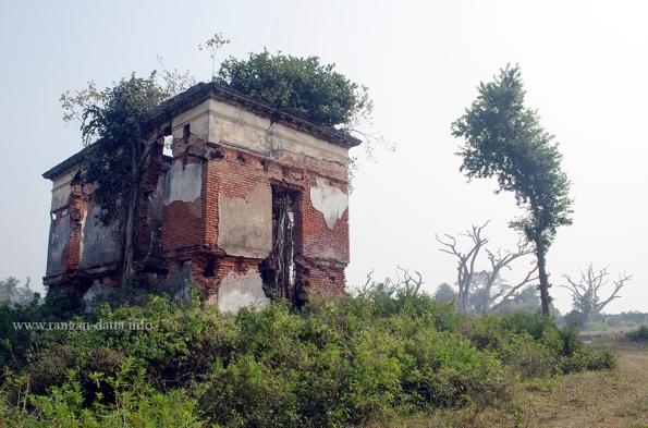 Bawali Farmhouse 31
