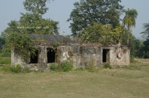 Bawali Farmhouse 37