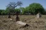 Nicholson's Cemetery 6