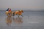 Gorai Beach 1