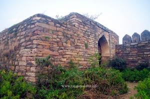 Rothasgarh Fort 88