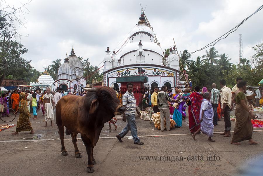 Chandaneshwar Temple near Digha
