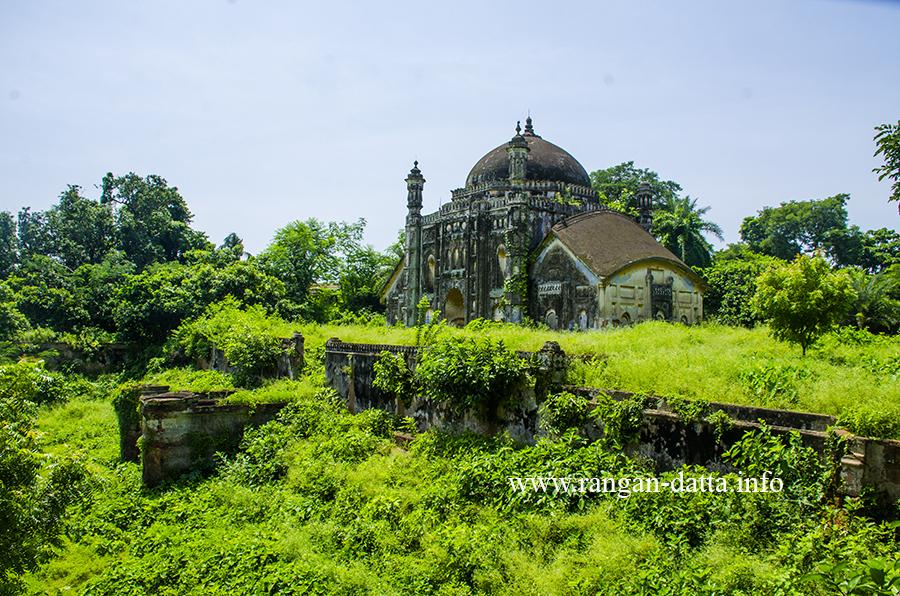 Mausoleum of Khwaja Anwar with the dense vegetation